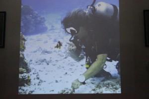 Pod vodou je nádherně